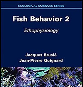 Fish Behavior 2